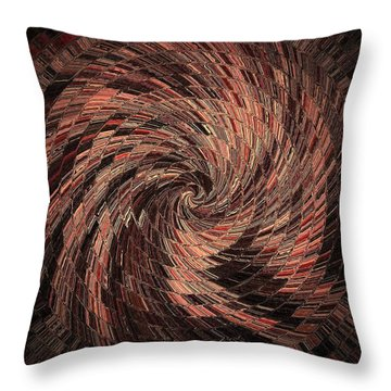 Transformation 2 Throw Pillow