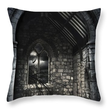 Transformation  Throw Pillow by Svetlana Sewell