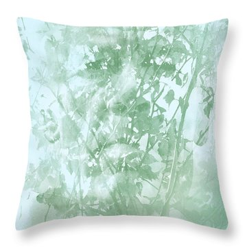 Transient Throw Pillow by Richard Piper