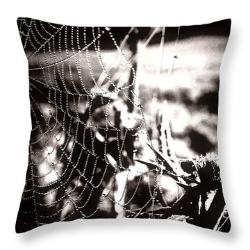 Trap - Falle Throw Pillow by Mimulux patricia no No