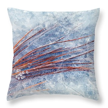 Trapped In Winter Throw Pillow by Mike  Dawson