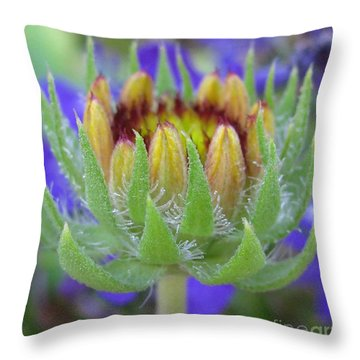 Throw Pillow featuring the photograph Treasure Photography by Tina Marie