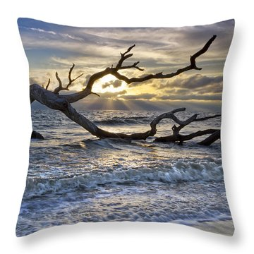 Treasures Of The Sea Throw Pillow by Debra and Dave Vanderlaan
