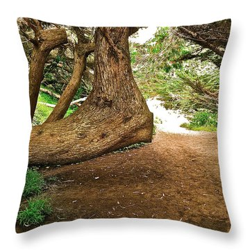 Throw Pillow featuring the photograph Tree And Trail by Bill Owen