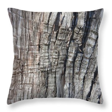 Throw Pillow featuring the photograph Tree Bark No. 1 Stress Lines by Lynn Palmer
