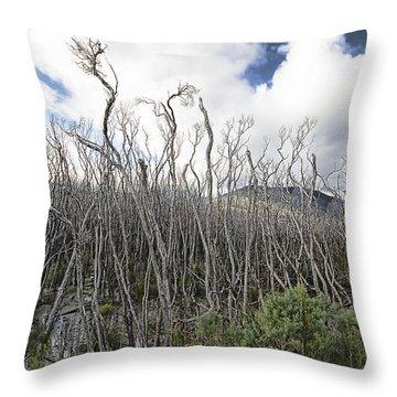 Tree Cemetery Throw Pillow