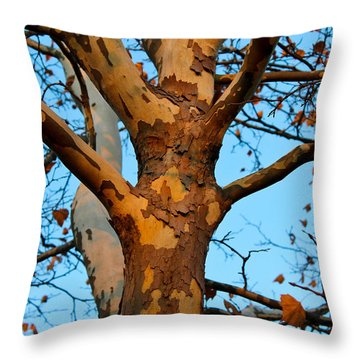 Throw Pillow featuring the photograph Tree In Camo by Rachel Cohen