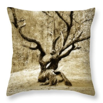 Tree In The Forest Throw Pillow by Susan Leggett