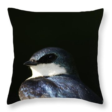 Tree Swallow 2012 Throw Pillow