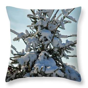 Throw Pillow featuring the photograph Tree Top by Mark Dodd