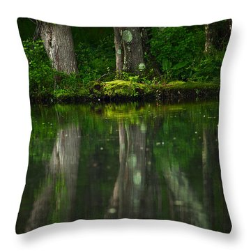 Tree Trunks Throw Pillow by Karol Livote