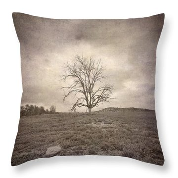 Tree Under The Rain Throw Pillow by Guido Montanes Castillo