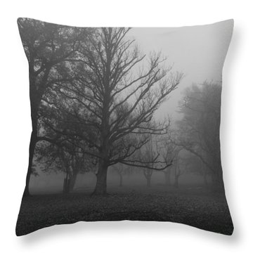 Throw Pillow featuring the photograph Trees And Fog by Maj Seda