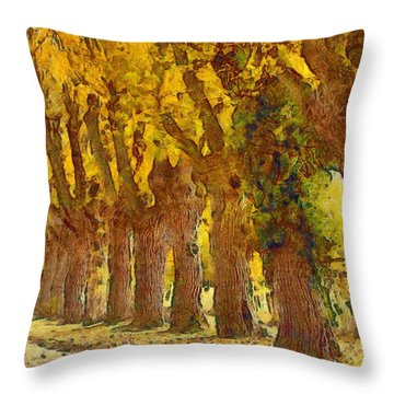 Trees In Fall - Brown And Golden Throw Pillow by Matthias Hauser