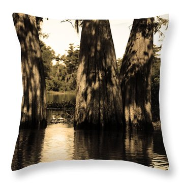 Trees In The Basin Throw Pillow by Maggy Marsh