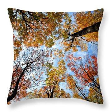 Treetops Throw Pillow by Elena Elisseeva