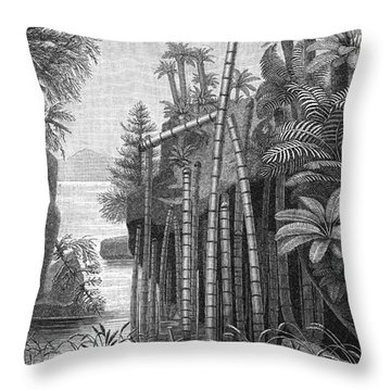 Triassic Period Throw Pillow by Science Source