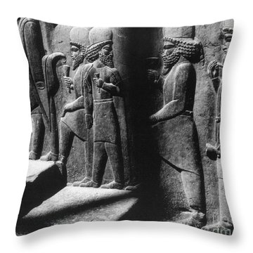 Tribute Bearers, Persepolis, Iran Throw Pillow by Science Source