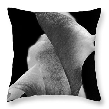 Throw Pillow featuring the photograph Tribute by Lauren Radke