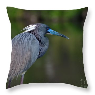 Throw Pillow featuring the photograph Tricolored Heron by Art Whitton