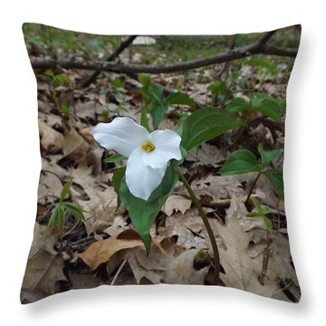 Throw Pillow featuring the photograph Trillium by Gerald Strine