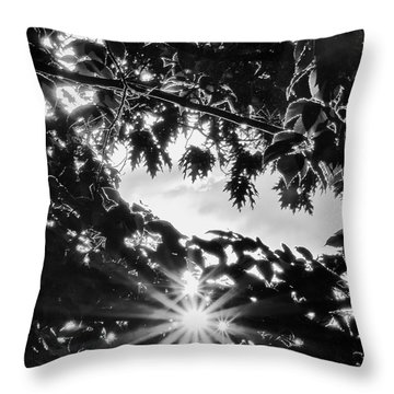 Triple Bluff Throw Pillow by Nathan Larson