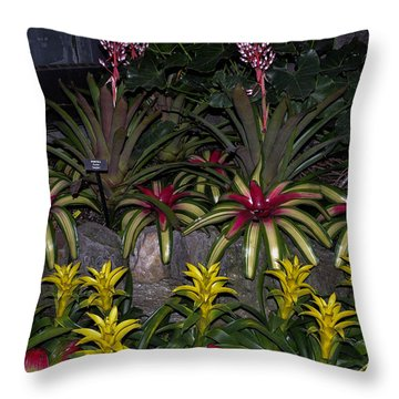 Tropical 1 Throw Pillow by Wanda J King