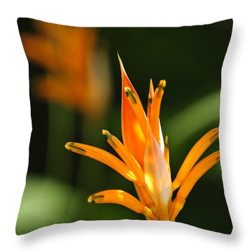 Tropical Orange Heliconia Flower Throw Pillow