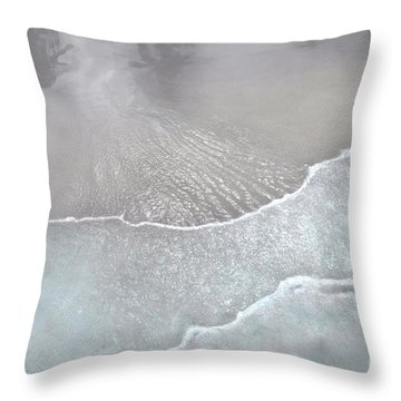Tropical Reflections B Throw Pillow by Cindy Lee Longhini