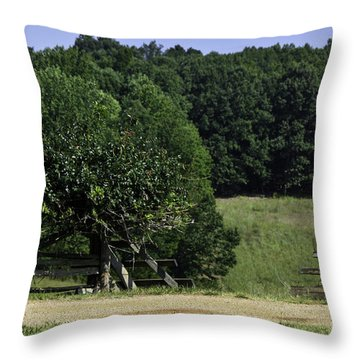Trumpet Vine And Fence At Appomattox Courthouse Virginia Throw Pillow by Teresa Mucha