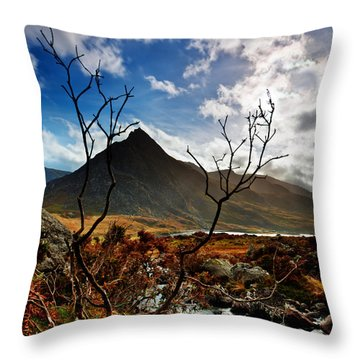 Tryfan And Tree Throw Pillow