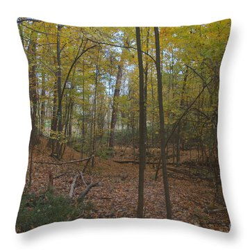Throw Pillow featuring the photograph Tryon Park by William Norton