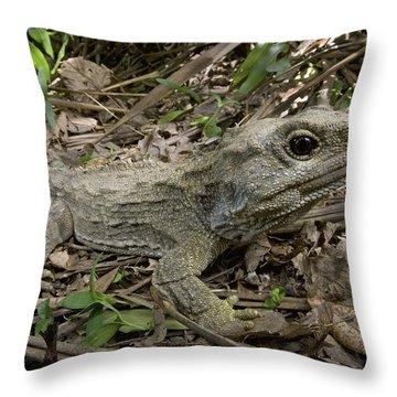 Tuatara Wellington New Zealand Throw Pillow by Piotr Naskrecki