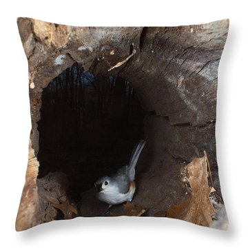 Tufted Titmouse In A Log Throw Pillow