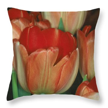Tulip 1 Throw Pillow by Andy Shomock