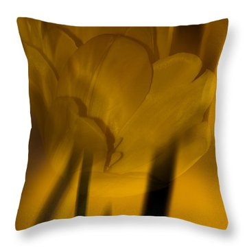 Throw Pillow featuring the photograph Tulip Abstract by Ed Gleichman