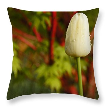 Tulip And Coral Maple In Spring Throw Pillow by Mick Anderson