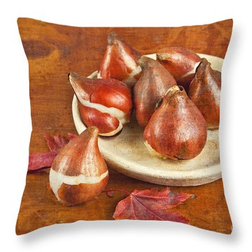 Throw Pillow featuring the photograph Tulip Bulbs Brocade by Verena Matthew