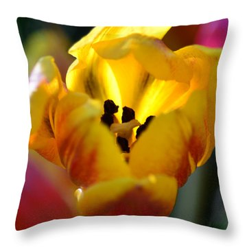 Tulip Light Throw Pillow by Sandi OReilly