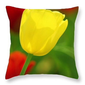 Tulipan Amarillo Throw Pillow