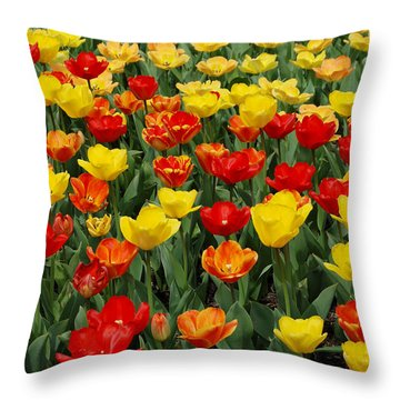 Throw Pillow featuring the photograph Tulips by Eva Kaufman