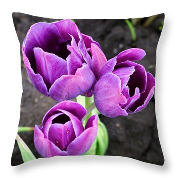 Tulips Queen Of The Night Throw Pillow
