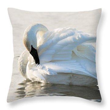 Tumpeter Swan Throw Pillow