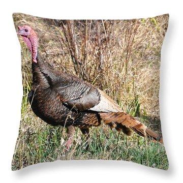 Turkey In The Straw Throw Pillow