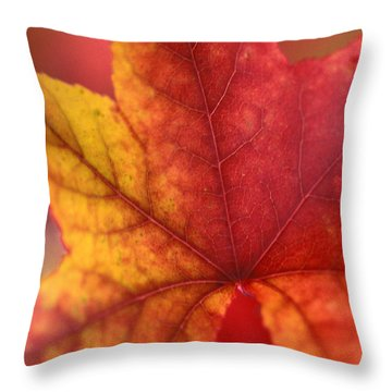 Turn Turn Turn Throw Pillow by Kathy Yates