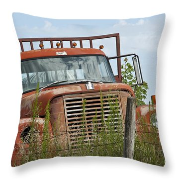 Turned Out To Pasture Throw Pillow by Wilma  Birdwell