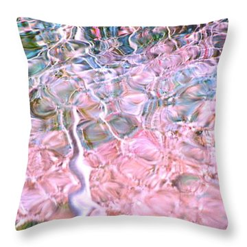 Turquoise Dreams B Throw Pillow by Cindy Lee Longhini