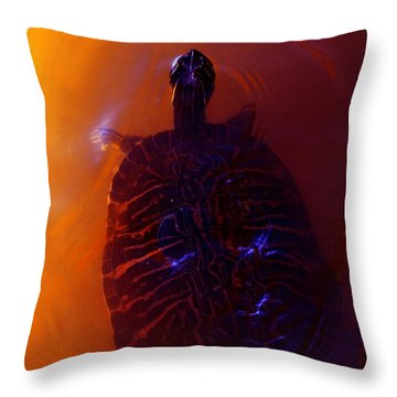 Turtle In Florida  Throw Pillow