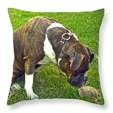 Throw Pillow featuring the photograph Turtle Love by William Fields