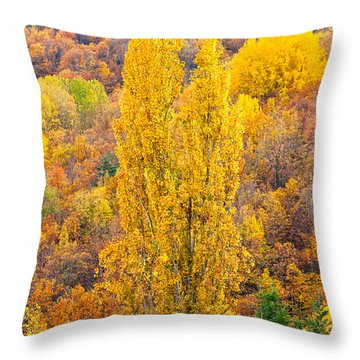Throw Pillow featuring the photograph Tuscany Landscape  by Luciano Mortula